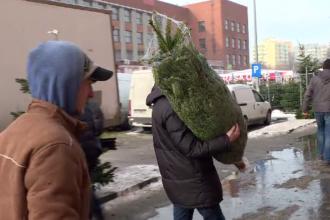 Bucureștenii s-au îngrămădit să cumpere brad pe ultima sută de metri. Prețul unei coronițe