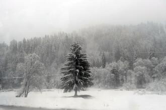 Ofertele pregătite de hotelierii români pentru turiştii care au ales să petreacă Revelionul pe Valea Prahovei