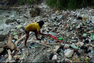 Războiul cu plasticul. Soluțiile oamenilor de știință pentru a salva viețuitoarele marine
