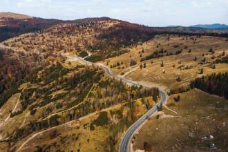 S-au tăiat păduri de 2,5 mld € în România. Peste jumătate din bani, făcuți din ilegalități