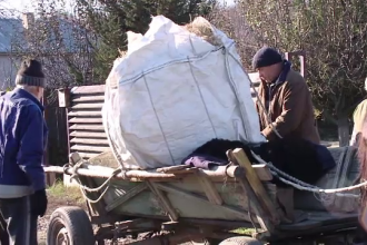 Doi soți din Iași, bătuți și umiliți de cel care i-a angajat: