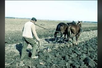 România, după 30 de ani. Agricultura, domeniul neglijat de mai marii țării
