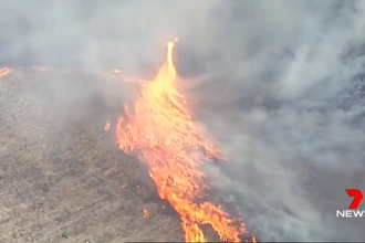 Tornadă de foc în Australia. Două MILIOANE de hectare, distruse de flăcări