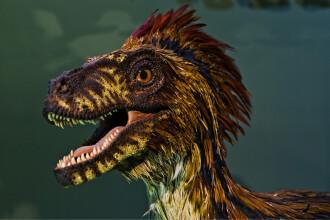 Descoperire neașteptată a cercetătorilor: Dinozaurii cu pene erau infestaţi cu păduchi