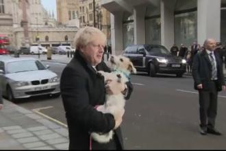 Boris Johnson și-a luat câinele la vot. Ce spun specialiștii despre alegerile din UK