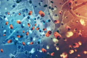 Cancerul de col uterin, boala care face ravagii în rândul româncelor. Numărul deceselor