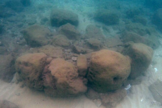 Descoperire fascinantă, veche de peste 7.000 de ani. Ce relevă despre strămoșii noștri