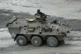 Motivul pentru care armata belgiană caută militari mai scunzi de 1,70 metri