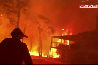 Peste 100 de incendii de vegetație, active în Australia. Cel puțin nouă persoane au murit
