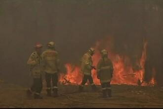 Australia, pârjolită de temperaturi de 43 de grade și incendii devastatoare