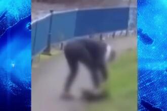 O femeie din Cluj-Napoca și-a bătut cu sălbăticie câinele, fără să ştie că e filmată