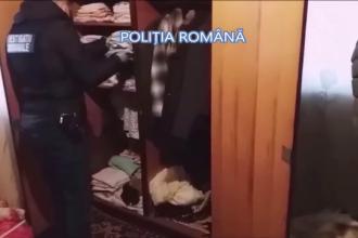 Zeci de arme ilegale și muniții, descoperite în urma unor percheziții în Buzău și Constanța