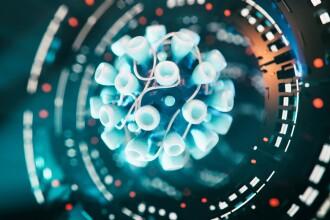 Austria detectează primele cinci cazuri cu noile mutaţii ale virusului SARS-CoV-2