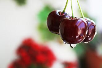 Cumparatori pacaliti! Fructele de import se vand in piete drept romanesti