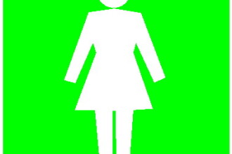 Jos palaria pentru femeia de serviciu la toaleta de la Universitate!