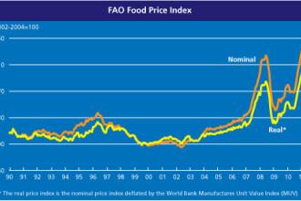 ONU avertizeaza: preturile alimentelor, mai mari ca niciodata