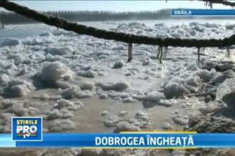 Gerul a prins ca intr-un cleste Dobrogea. Dunarea,un pod compact de gheata si imposibil de traversat