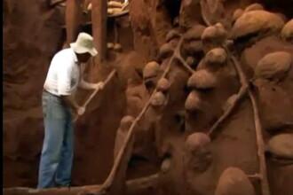 Societatea insectelor. Orasul subteran al furnicilor care rivalizeaza cu Marele Zid Chinezesc. VIDEO