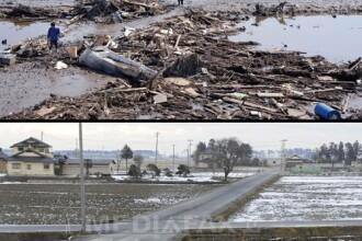 Japonia, la un an de la tragedie. Tara in care soarele rasare si dupa tsunami. Imaginile miracolului