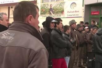 Agricultorii romani ameninta ca isi parasesc serele daca nu vin banii de la UE