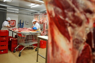 Carne de doua milioane de euro, adusa din Ungaria, la negru. Ce au patit administratorii firmei