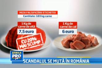 Autoritatile au descoperit carne de cal, etichetata drept carne de vita, intr-un depozit din Romania