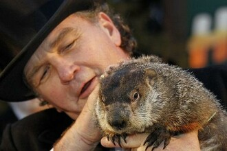 Marmota Phil din Pennsylvania