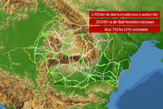 Marea reimpadurire a drumurilor. Cat ar costa 20.000 de hectare de copaci pentru
