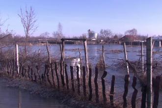 Zeci de localitati din Braila, inundate dupa ploile din ultimele zile. Localnicii se tem ca structura caselor va ceda