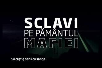 StirileProTV, 19:00: Sclavi pe Pamantul Mafiei. Marturiile teribile ale romancelor ce au ajuns sclave sexuale in Sicilia