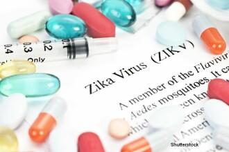OMS avertizeaza Europa sa ia masuri impotriva Zika. Riscul de infectare va creste odata cu sosirea primaverii
