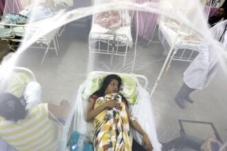 Primele decese cauzate de virusul Zika, anuntate in Columbia. Cercetatori brazilieni au detectat virusul in urina si saliva