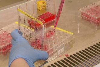 Încă o persoană a murit din cauza gripei. Bilanțul negru al victimelor a ajuns la 19