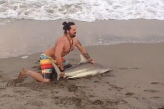 Scene revoltatoare in Florida. Ce s-a intamplat dupa ce un barbat a scos din apa un rechin pentru a se poza cu el. VIDEO