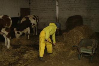 O fundatie le-a sarit in ajutor oamenilor strazii din Timisoara. Primesc masa, cazare si salariu ca sa lucreze la o ferma