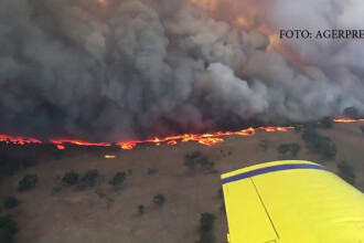 Tornade de foc in toata Australia, din cauza secetei.