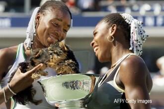 Pentru al doilea an consecutiv, turneul de tenis Brazil Open va avea caini in loc de copil de mingi. Care e scopul campaniei