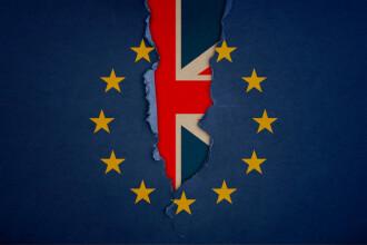 Summit decisiv pentru Brexit. Negociatorul-şef al UE a cerut mai mult timp