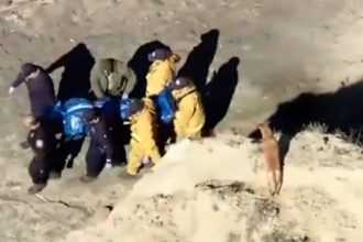 Un american a murit, după ce a încercat să-i salveze viața câinelui său. VIDEO