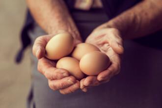 """O firmă de pază din Venezuela atrage angajați cu un bonus format din ouă. """"Este un stimulent bun"""""""