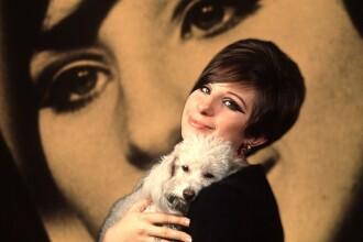 Barbra Streisand şi-a clonat câinele în două exemplare. Cum le deosebeşte