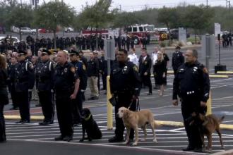 Funeralii impresionante pentru un câine al poliţiei din Texas, ucis la datorie