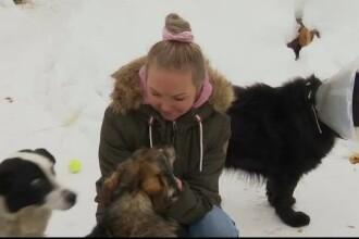 Aplicația prin care tot mai mulți lituanieni își adoptă un câine