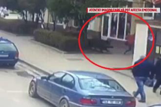 Momentul în care două persoane sunt atacate de un mistreț, în Sălaj
