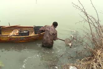 Peștii din bălţile Capitalei ar fi fost ucişi de avioane. CNAB ameninţă cu procesul