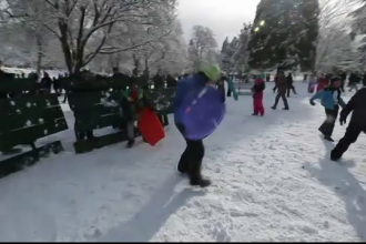 O femeie a anunţat pe Facebook că organizează o bătaie în parc. Ce a urmat