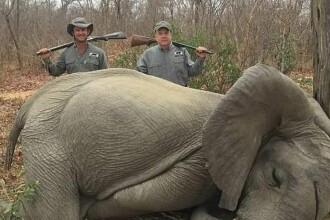 Ţara care a dat liber la vânătoarea de elefanţi. Motivul invocat de autorităţi