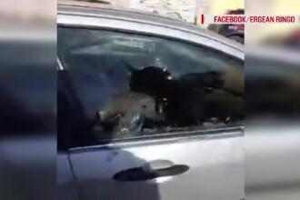 Un român din Italia și-a distrus mașina de față cu carabinierii, după ce i-au sechestrat-o