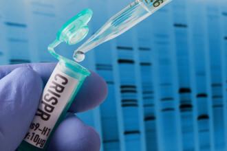 Chinezii ar fi modificat genetic creierele unor gemene. Ce putere au fetiţele