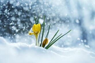 Precipitații în toată țara începând cu 1 martie. Prognoza meteo pentru două săptămâni
